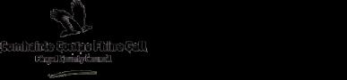 Fingal County Council Logo