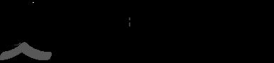 Bord Gais Logo